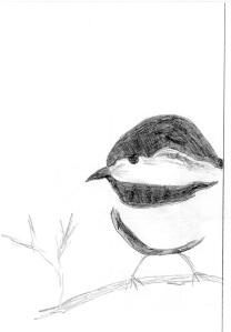 Draw A Bird (DAB) 2 April 2014 by Elly